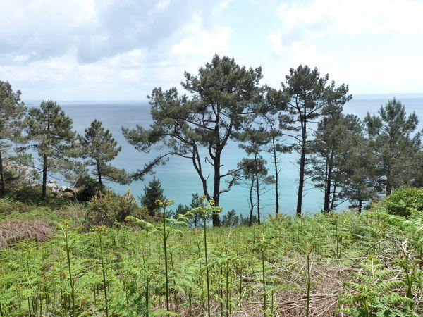 Presqu'ile de Crozon, Bretagne
