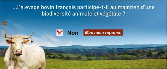 Bannière interbev le boeuf et la biodiviersité