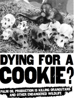mourir pour un cookie